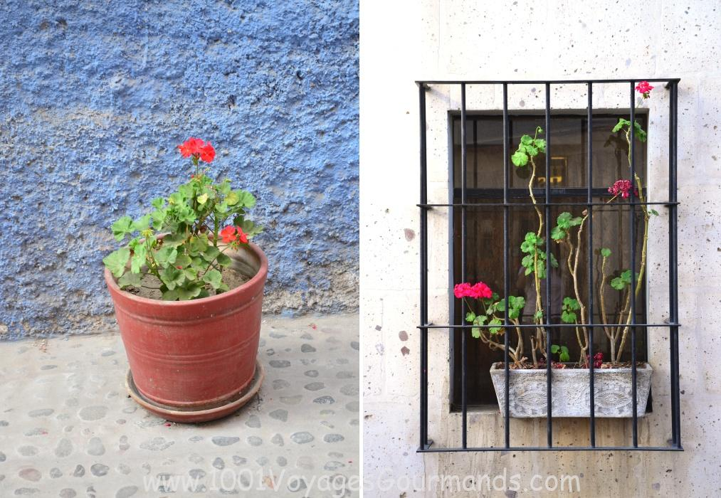 One Day in the White City of Arequipa