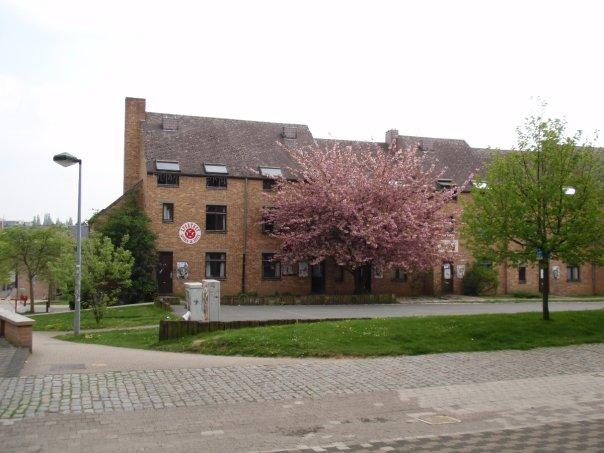 Erasmus_in_Louvain_la_Neuve_10