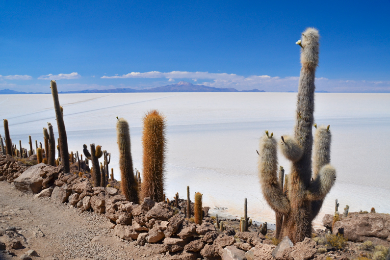 If you plan to visit the largest salt flats in the world, here is a quick guide to Salar de Uyuni trip that covers the most important facts you need to know