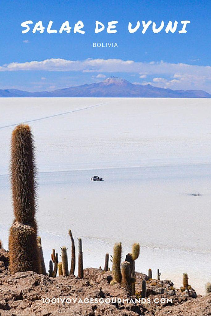 Jak vypadal první den našeho třídenního výletu s agenturou Salt Andes Expedition, a co skrývá magický Salar de Uyuni, se dočtete v tomto článku.