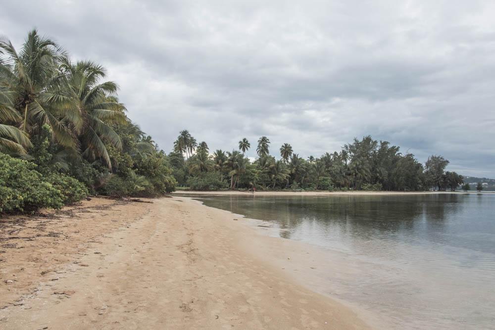 Další článek ze série Portoriko je o plážích východního pobřeží a o tom, jak jsme výletovali v deštném pralese El Yunque s portorikánským hudebníkem.