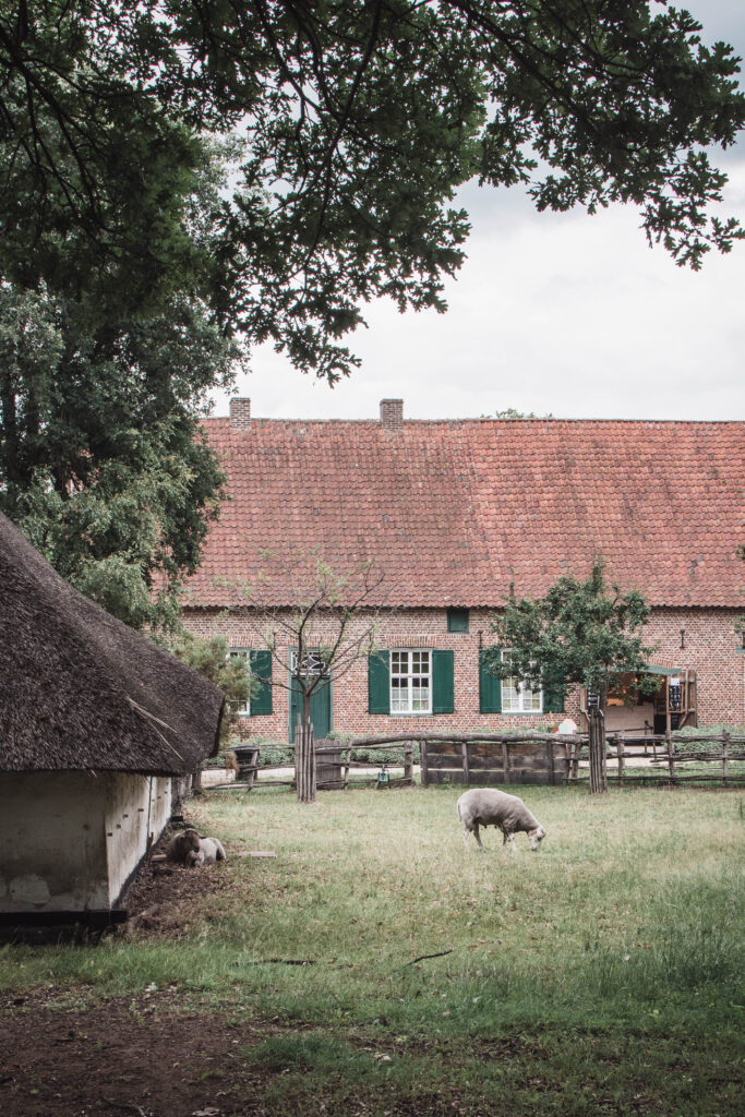 day I am happy to share with you a tip for a day trip to a very beautiful place called Bokrijk located in Limburg, not so far from where we live now!